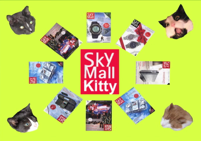 Katchadourian: Skymall Kitties: Digital Video with Sound: 2010